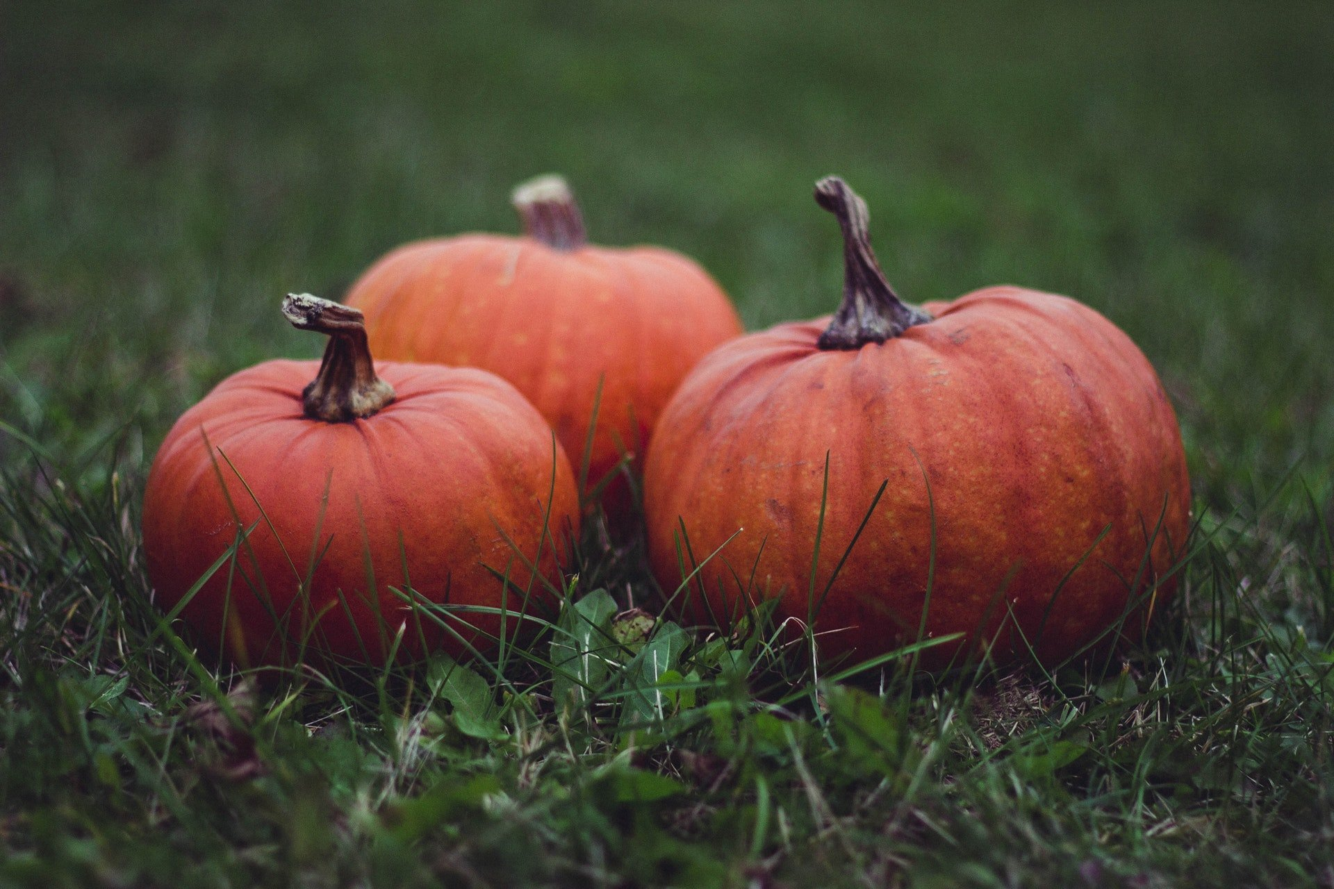 The Digital Mission of Church Online: Halloween Edition